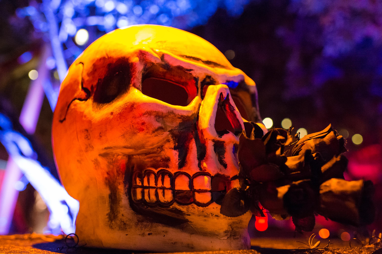 Let' talk about SLS Baby- Halloween 2014 – ViqueIntheMix