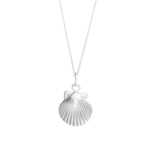 SS Small Scallop Shell